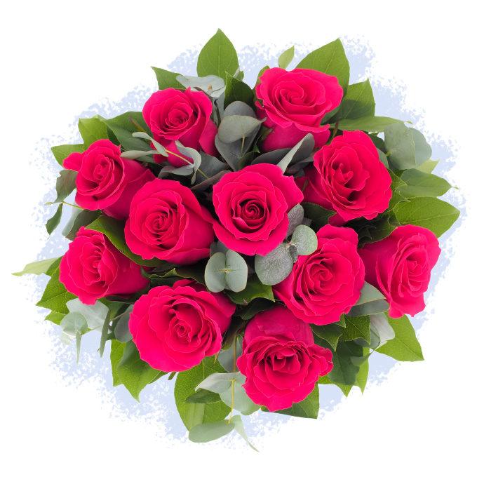 Buchet 11 trandafiri fucsia, sau roz intens